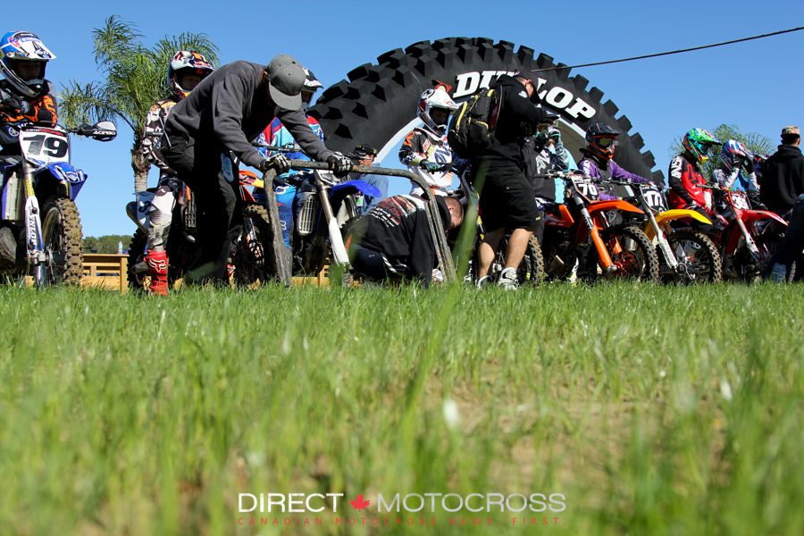 The start straight was full of grass before the first gate drop. It didn't last long.